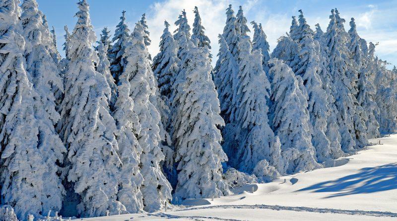 Malerarbeiten im Winter